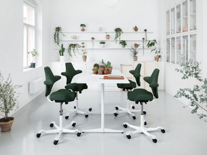 ergonomie-travail