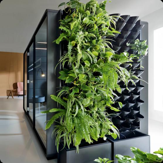 plantes-vertes-bureaux